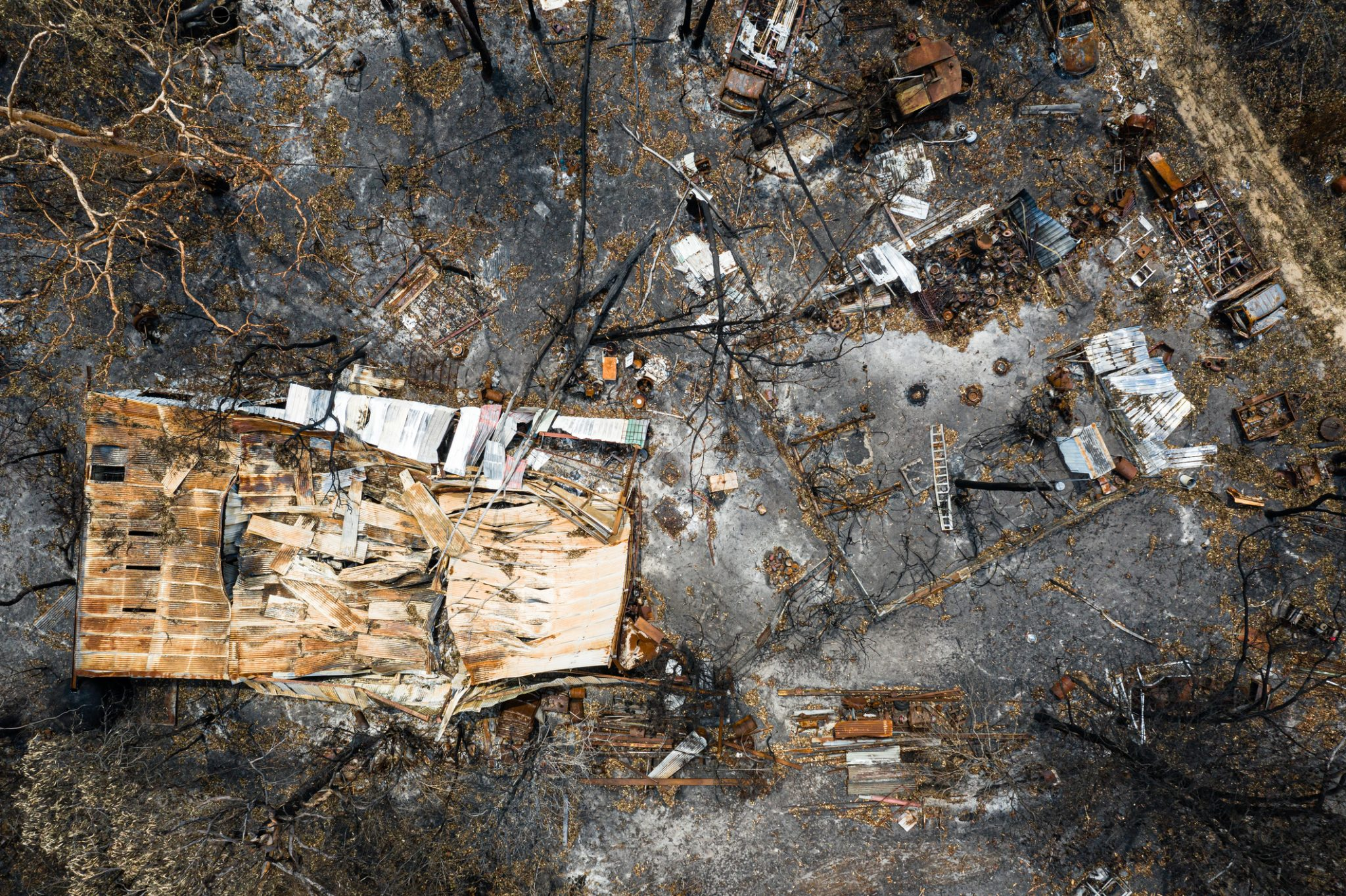 Tradies to lead bushfire recovery